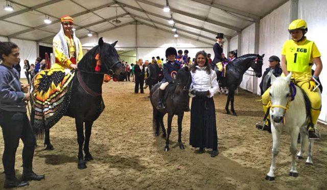 Sophie Goodchild Horse Care apprenticeship